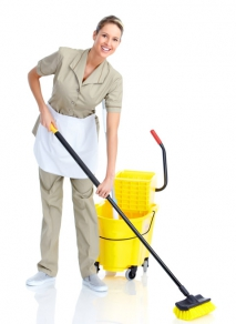 Environmentally Friendly Cleaning: Making Your Home and the World a Better Place